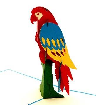 Le perroquet qui parle