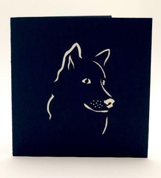 couverture le chien Kintamani