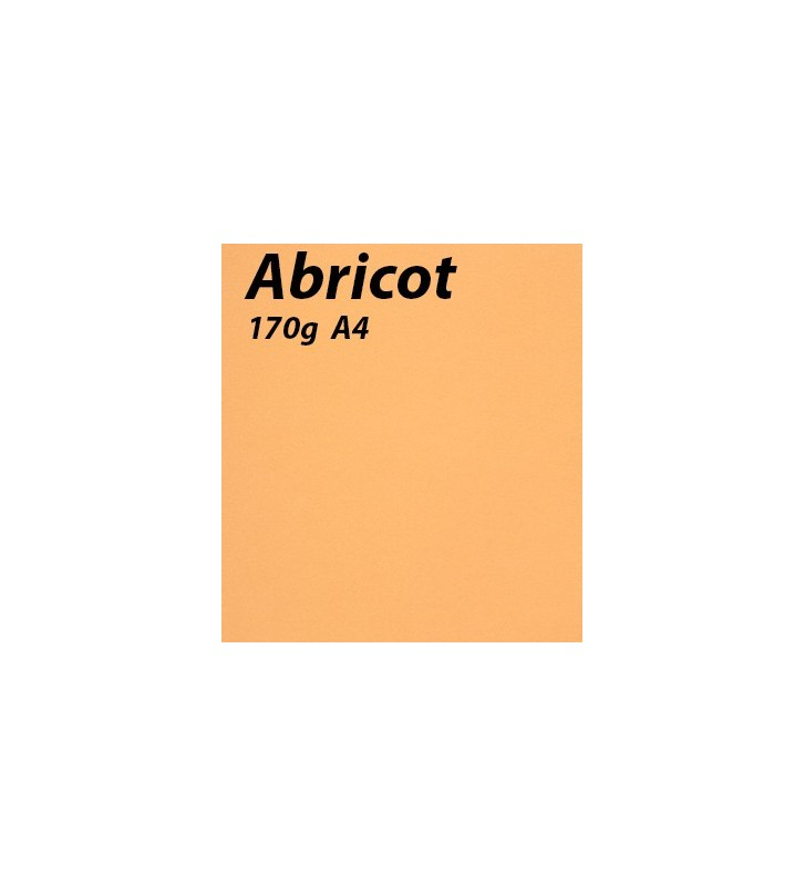 papier Abricot A4 170g