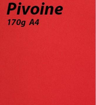 papier Pivoine A4 170g