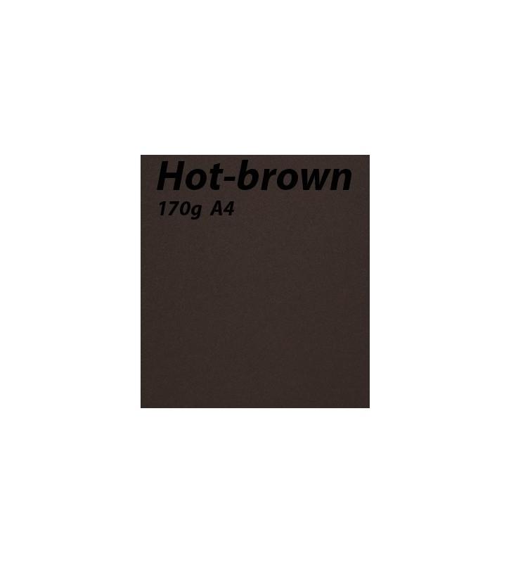 papier Hot-Brown A4 170g