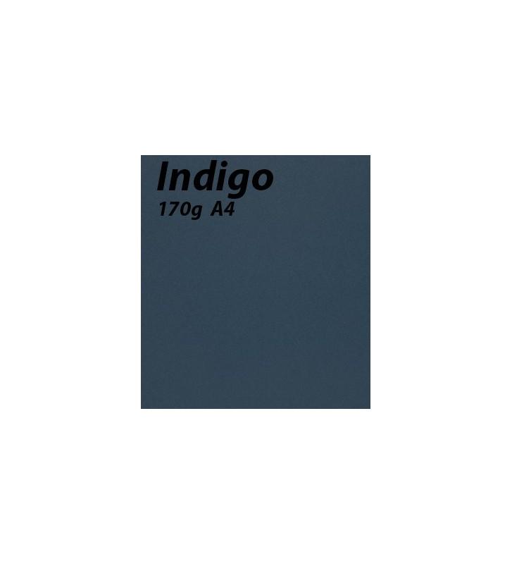 papier Indigo A4 170g