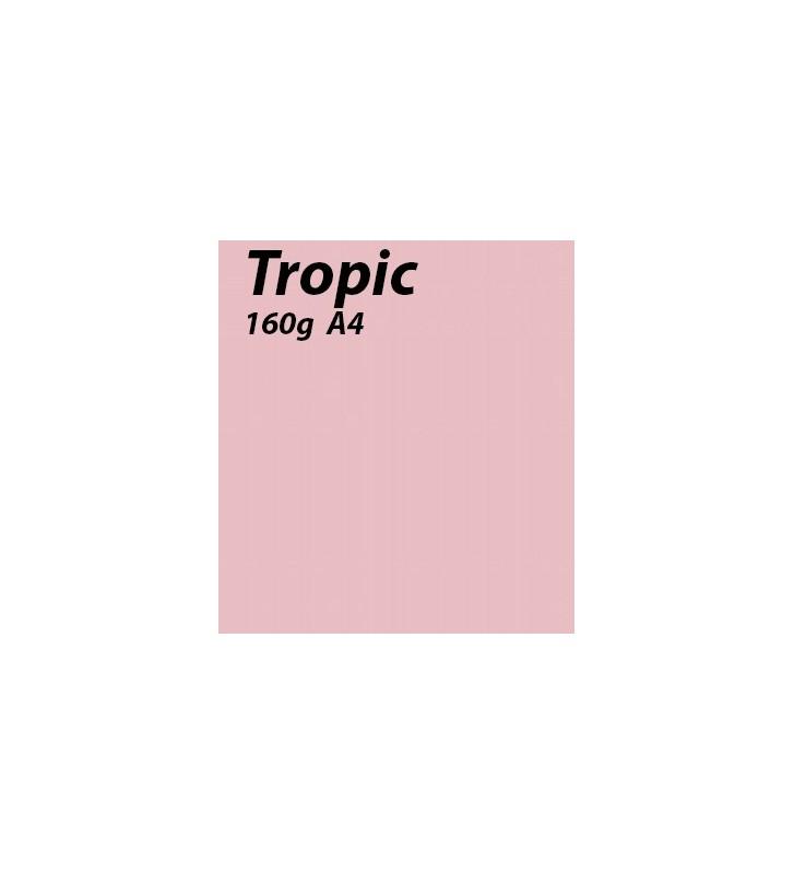 papier Tropic A4 170g