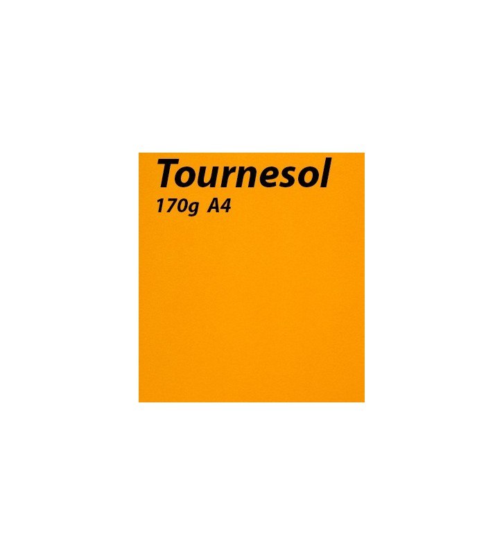 papier Tournesol A4 170g