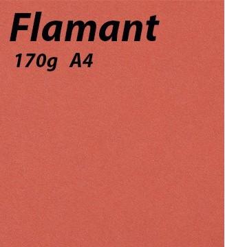 Papier 170g A4 Flamant