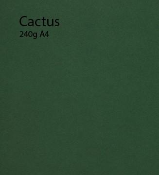 240g Cactus papier A4