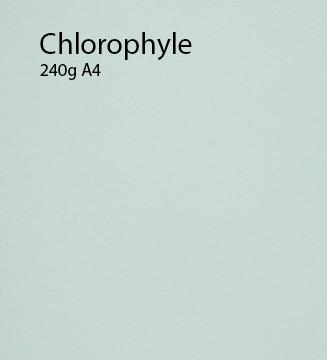 240g Chlorophylle papier A4