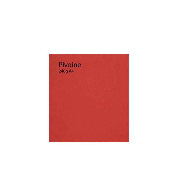 240g Pivoine papier A4