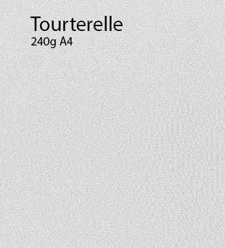 240g Tourterelle papier A4
