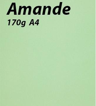 125 feuilles Amande