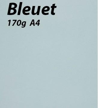 125 feuilles Bleuet