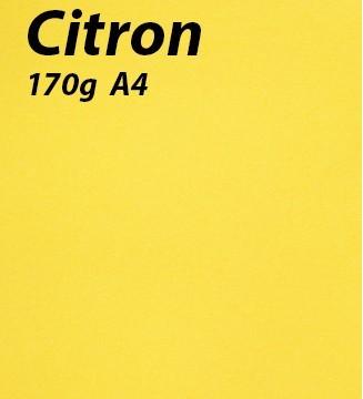 125 feuilles Citron