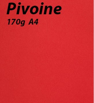 125 feuilles Pivoine