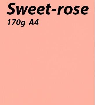 125 feuilles Sweet-Rose