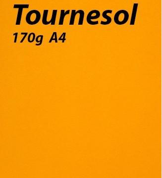 125 feuilles Tournesol