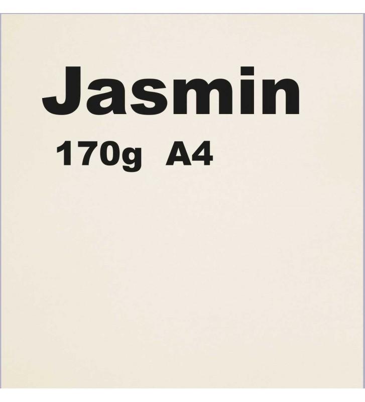 Papier 170g A4 couleur Jasmin