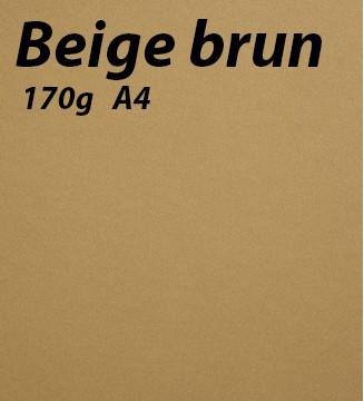 125 feuilles Beige Brun